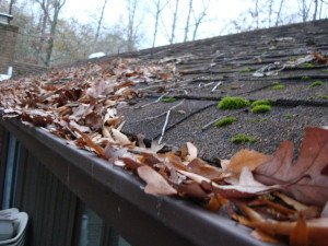 Keep Your Gutters and Downspouts Running Smoothly With Maintenance